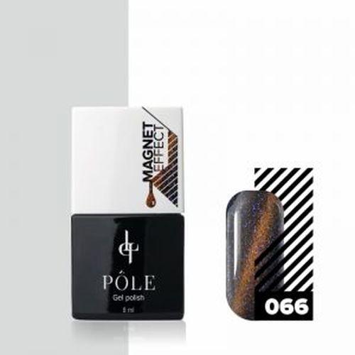 Pole Кошачий глаз66